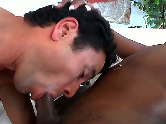 Black shemale having her massive cock sucked